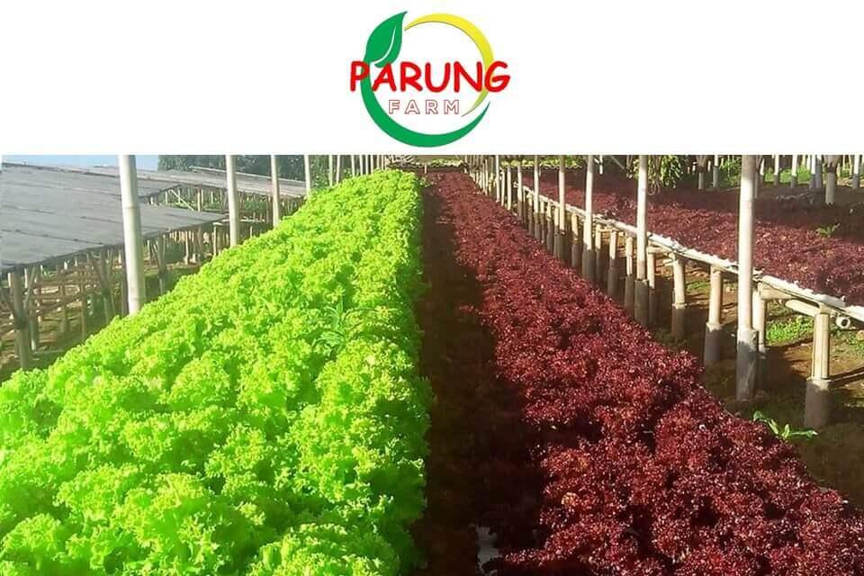 Parung Farm