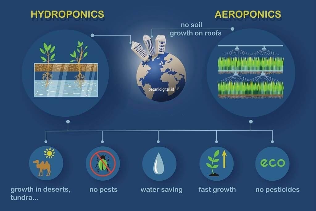 Persamaan hidroponik dan aeroponik