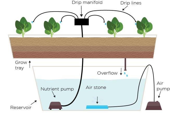 sistem hidroponik tetes